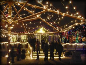 Christmas Lights Boise.Rent A Party Bus For Any Party Or Occasion Boise Party Bus